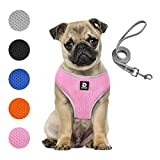 Puppy Harness and Leash Set - Dog Vest Harness for Small Dogs Medium Dogs- Adjustable Reflective Step in Harness for Dogs - Soft Mesh Comfort Fit No Pull No Choke (S, Pink)