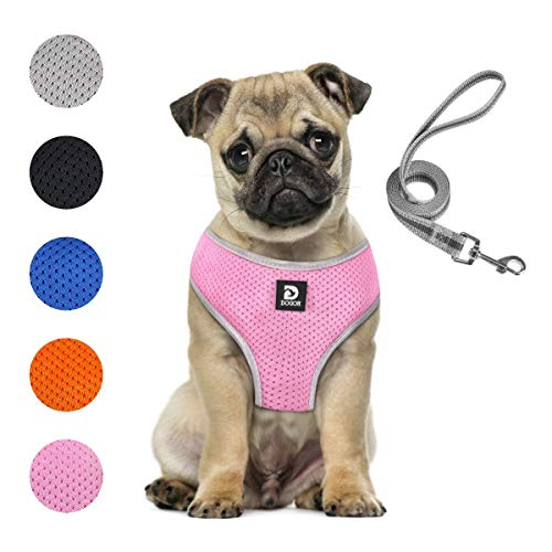 Puppy Harness and Leash Set - Dog Vest Harness for Small Dogs Medium Dogs- Adjustable Reflective Step in Harness for Dogs - Soft Mesh Comfort Fit No Pull No Choke (M, Pink)