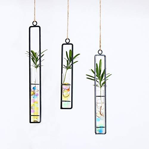 Futaikang 3 Stück Luftpflanzen Hängenden Metall Luft Pflanze Halter Topf Container Dekoration,transparenter Vase, Reagenzglas, Blumendesign, 3 Stück