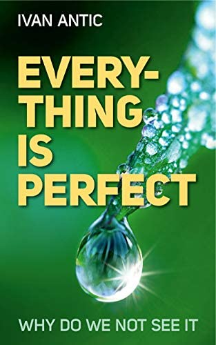 Everything Is Perfect Why Do We Not See It Existence Consciousness Bliss Book 6 product image