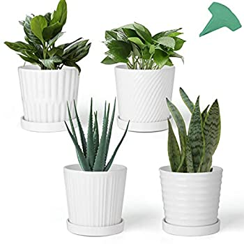 GROWNEER 4 Packs 6 Inches White Ceramic Flower Pots Planters with 15 Pcs Plant Labels Round Plant Pot with Non-Removable Tray for Indoor Outdoor Garden Living Room Bedroom Balcony