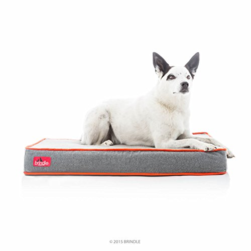 Brindle Waterproof Designer Memory Foam...