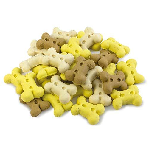 Arquivet Biscuits - Galletas para perros - Snacks para perros - Mini huesos de vainilla - Premios, chuches y golosinas - Alimento complementario perros - 2,5 kg