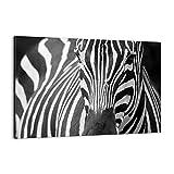 ARTTOR Cuadro sobre Lienzo - Impresión de Imagen - Animales Cebra Rayas - 100x70cm - Imagen Impresión - Cuadros Decoracion - Impresión en Lienzo - Cuadros Modernos - Lienzo Decorativo - AA100x70-2254