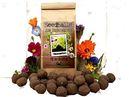 Die Seedball-Manufaktur, Bienenstaatsbankett Seedball Baukasten zum Selberrollen, Naturfarbene Kraftpapiertüte, 10 x 7 x 27 cm