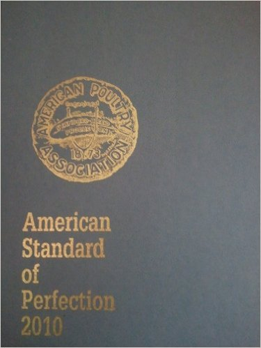 American Standard of Perfection 2010
