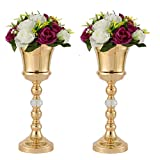 LANLONG Lot de 2 vases en métal pour centre de table de mariage, décoration florale artificielle, bougeoir pour mariage, fête, dîner, événement, décoration intérieure, Couleur 1#, 2XL