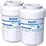 Waterspecialist MWF Refrigerator Water Filter, Replacement for GE SmartWater MWFP , MWFA, GWF, HDX FMG-1, WFC1201, GSE25GSHECSS, PC75009, RWF1060, Pack of 2