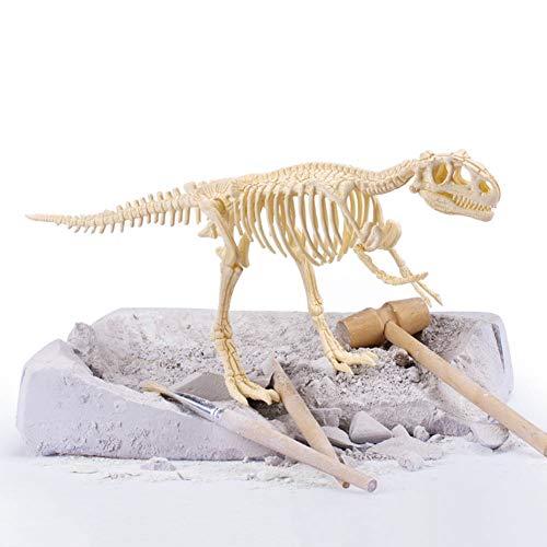 BIUYYY Tyrannosaurus Ausgrabungsset, Dinosaurier Dig Kit Realistische 3D-Skelett Dinosaur Modell Lernspielzeug Fossil Digging Kit Geschenk für Kinder