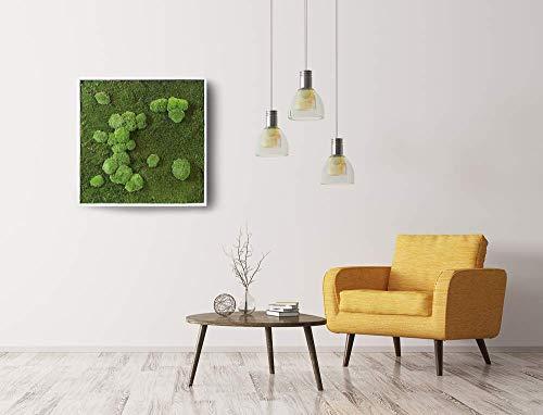 Quadro in flat e ball Moss, Moss Frame, quadro in lichene stabilizzato, quadro vegetale,...