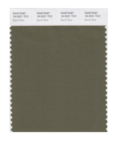 PANTONE Smart 18-0521X Farbmusterkarte, Burnt Olive