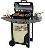 Piushopping Barbecue a Gas con Pietra Lavica, da Giardino, Campingaz Expert - Deluxe 110x50x111h