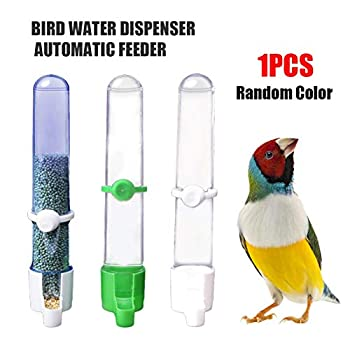 Awayhall Distributeur Eau Nourriture pour Oiseau Boîte De Nourriture Myna Parrot Abreuvoirs Distributeur d'eau Automatique Oiseaux Mangeoires Boîte De Nourriture pour Perroquet