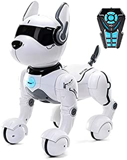 Remote Control Robot Dog Toy, Robots for kids