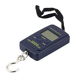 LIXUDECO Mini balance électronique numérique portable 40 kg x 10 g avec crochet de pêche
