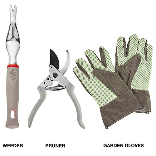 Neiko 61090A Heavy Duty 8 Piece Gardening Tool Set | Premium Storage Tote Bag | Ergonomic Soft-Grip Handle | Unisex for Men and Women | Shovel, Trowel, Transplanter, Rake, Pruners, Gloves and More