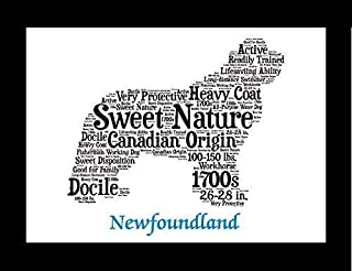 Newfoundland Dog Wall Art Print - Personalized Pet Name - Gift for Her or Him - 11x14 matted - Ships 1 Day