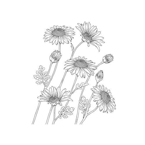 DUOYO boceto calcomanías de girasol pegatinas de pared de flores murales de arte autoadhesivos impermeables para sala de estar dormitorio baño baño casa decoración de bricolaje