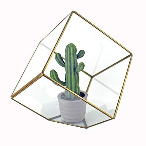 HO-TBO Pflanze Terrarium, Cube Tabletop Geometric Terrarium Innen Schreibtisch Planter DIY-Mittel Vase Saftige Blumentopf Gewächshäuser Gartenarbeit (Color : Brass, Size : 15X15X15CM)
