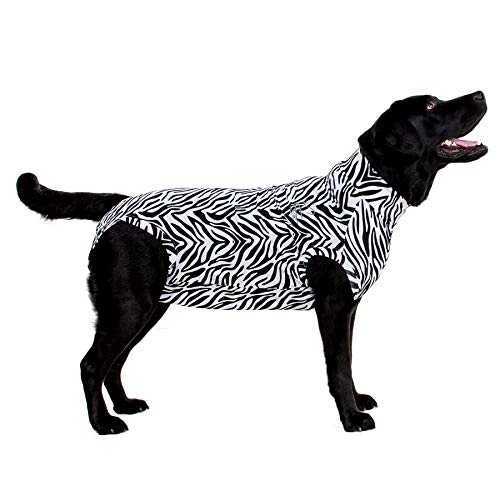 MPS Medical Pet Shirt Hund, Zebra Print, XXS