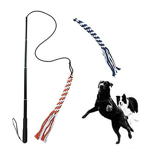 ASOCEA Hund Ausziehbarer Teaser Zauberstab Pet Flirt Stick Pole Welpe Chasing Tail Interaktives Spielzeug für kleine mittelgroße Hunde Training Spielen Übung Training