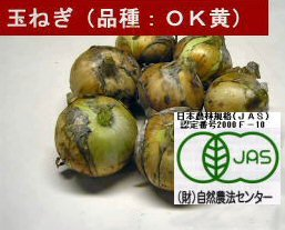 無農薬 JAS有機栽培玉ねぎ(1kg)
