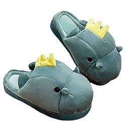 6. LANFIRE Plush 3D Character Dinosaur Slippers