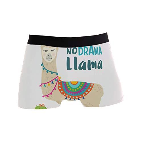 BONIPE Calzoncillos bóxer para Hombre con diseño de Llamas de Dibujos Animados, elásticos y Transpirables, Talla S