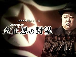 Nスペ 金正恩の野望(NHKオンデマンド)
