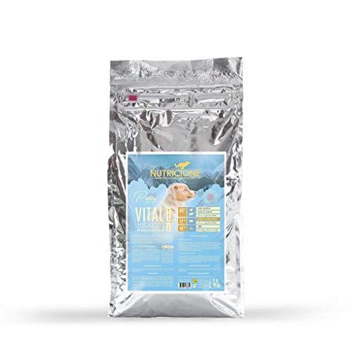 Nutricione Alimento Completo Seco (pienso) Vital Health Grain Low 15 kg Cachorros Ternera, salmón y Cerdo ibérico