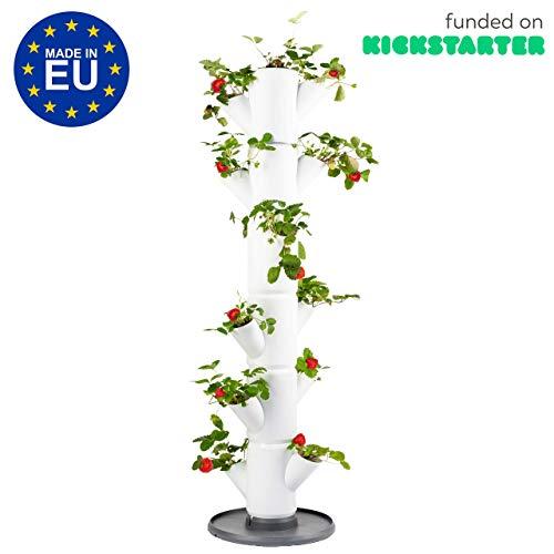 GUSTA GARDEN Sissi Strawberry (Classic, weiß) - Pflanzgefäß/Topf/Pflanzturm/Hochbeet für Erdbeeren - für Balkon, Garten und Terrasse - Erdbeeren und Kräuter anpflanzen