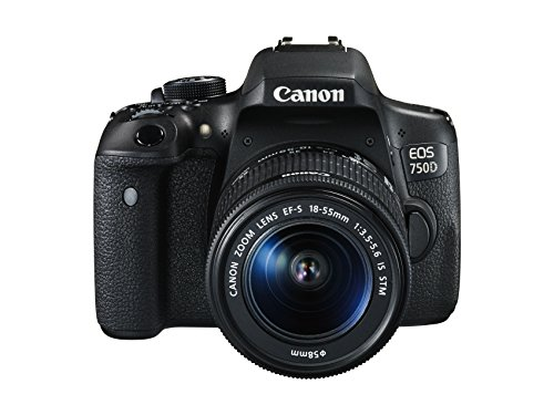 Canon EOS 750D + EF-S 18-55 IS STM Juego de cámara SLR 24.2MP CMOS 6000 x 4000Pixeles Negro - Cámara Digital (24,2 MP, 6000 x 4000 Pixeles, CMOS, Full HD, Pantalla táctil, Negro)