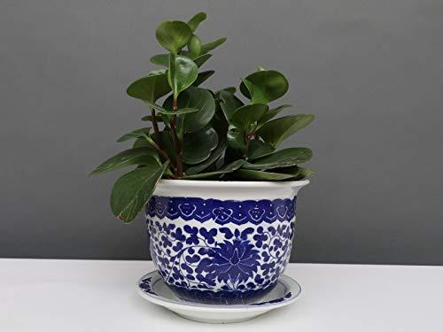 Yajutang Maceta de porcelana china, flores de loto, 20 cm de diámetro, color azul y blanco