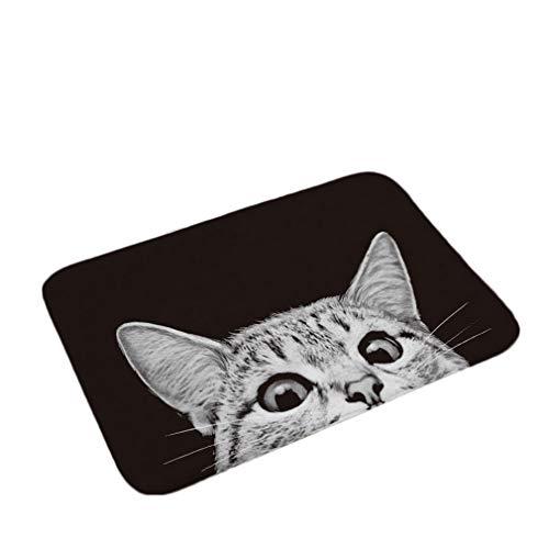 Nunbee Fußmatte Schwarze und weiße Katze Designe Anti Rutsch Unterlage Wasseraufnahme Teppich Praktische Schmutzfangmatte Haustür Flur Innenbereich Aussen Lustig, Katze 9 40 * 60cm