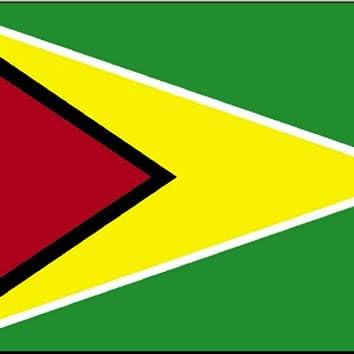 Straight from Guyana (feat. Fire Torch & Conn Artist) - Single