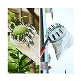 SEHNL Raccoglifrutta Metallo Fruit Picker Comodo Tessuto Frutteto Giardinaggio Mela Peach Albero Alto Utensili da scasso Fattoria Strumento