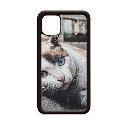Animal colorido gato fotografía imagen para iPhone 12 Pro Max cubierta para Apple mini caso móvil Shell