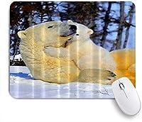 NIESIKKLAマウスパッド ホッキョクグマの母親がベイベイの動物アートで遊ぶ ゲーミング オフィス最適 おしゃれ 防水 耐久性が良い 滑り止めゴム底 ゲーミングなど適用 用ノートブックコンピュータマウスマット