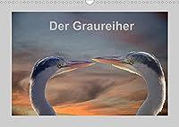 Der Graureiher (Wandkalender 2022 DIN A3 quer): Er ist ein toller Segler und Fischer. Immer sehr aufmerksam und sehr schreckhaft. (Monatskalender, 14 Seiten )
