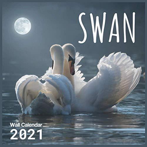 Swan Calendar 2021: Cute Animal Photos Monthly Calendar 16 Month Wall & Office Calendar Gifts For Swan Lovers