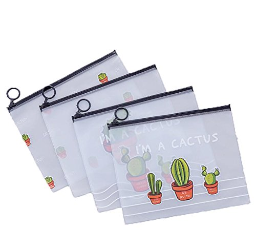 Estuche de plástico para lápices (4 unidades), diseño de cactus, transparente