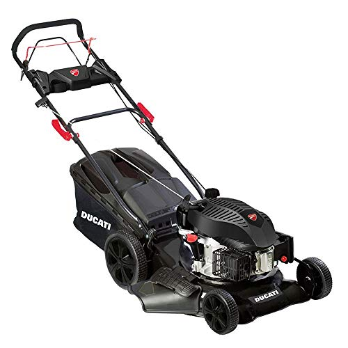Ducati DLM 5100 Cortacésped autopropulsado - Gasolina, 173 CC, 5 HP, 50 cm