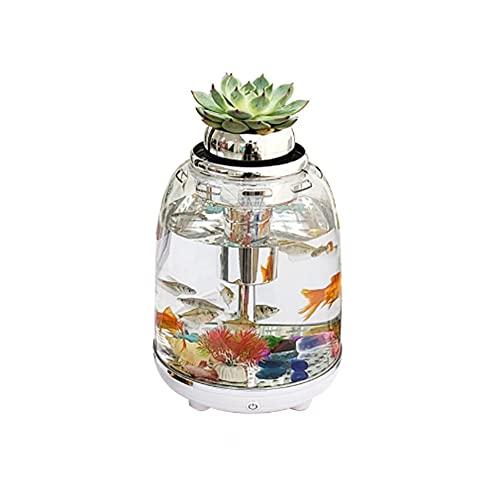 XYZMDJ Réservoir de Poisson d'aquarium 5.5L avec Filtre électrique Eclairage de LED coloré Transparent pour Accessoires d'aquarium de Bureau de Bureau à Domicile