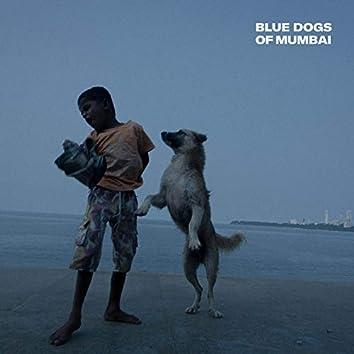 Blue Dogs of Mumbai