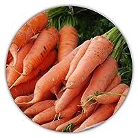 carote giganti, uniche e gustose, 50 semi, ad alto contenuto di carotene, un'esplosione di vitamine