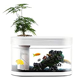 Aquariums Fish Tank Amphibious Ecological Transparent Fish Tank Living Room Flower Stand Office Desktop Turtle Tank White