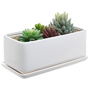 Silk Flower Arrangements 10 inch Rectangular Modern Minimalist White Ceramic Succulent Planter Pot/Window Box with Saucer