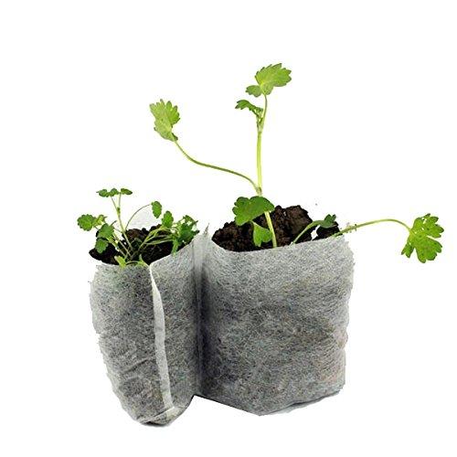 Caxmtu Lot de 100 sacs biodégradables en tissu non tissé pour semis