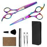 RGXY Juego de tijeras profesionales para cortar el pelo, tijeras de acero inoxidable, tijeras de corte recto, con pinzas de cabo, peines, cepillo de pelo, funda de cuero para peluquería y hogar