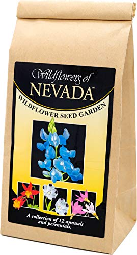 Nevada Wildflower Seed Mix - A Beautiful Collection of Twelve annuals and perennials - Enjoy The Natural Beauty of Nevada Flowers in Your own Home Garden